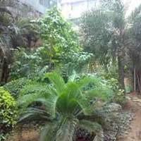 广州海印花园小区图片
