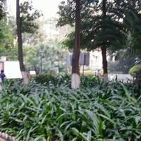 广州富力阳光美居图片