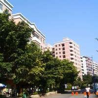 广州鸿燕居图片