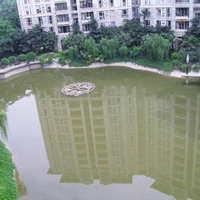 锦绣香江丹桂园