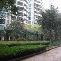 广州逸景翠园小区图片