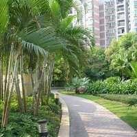 广州祥景花园图片
