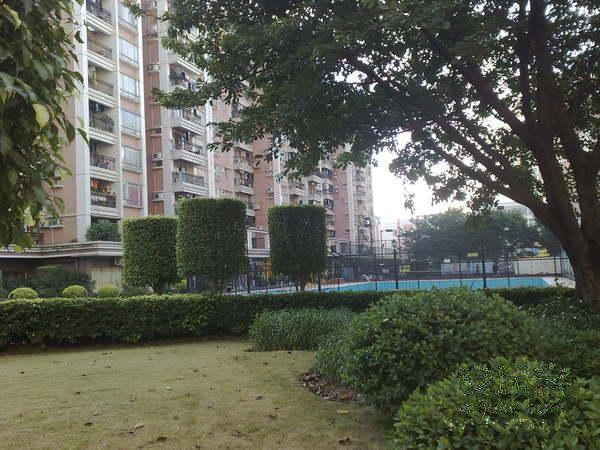 广州天力居二手房房源图片