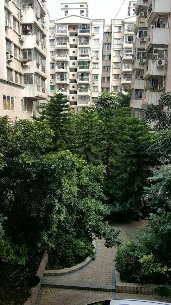 广州雅怡居二手房房源图片