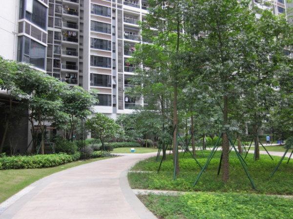 推推99广州房产网新城国际寓出租房房源图片