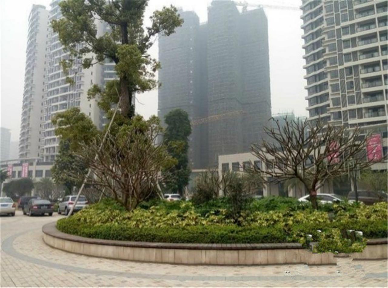 广州锦绣新城外景图