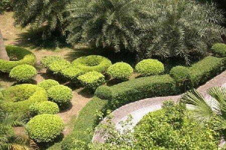 推推99广州房产网雅景苑出租房房源图片
