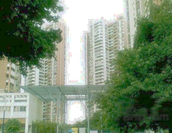推推99广州房产网光大花园外景图